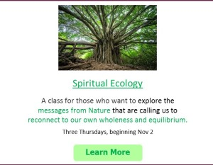 spiritual ecology ad box for website
