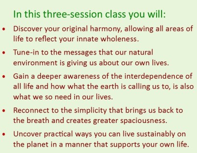 what you get box - spiritual ecology course